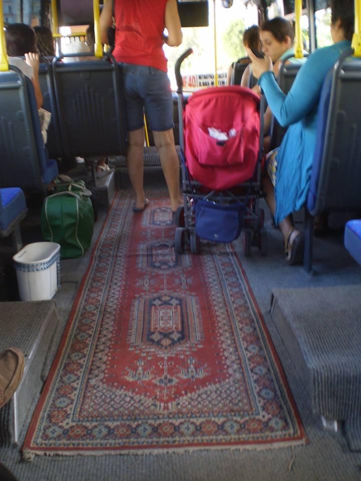 a bela da carpete
